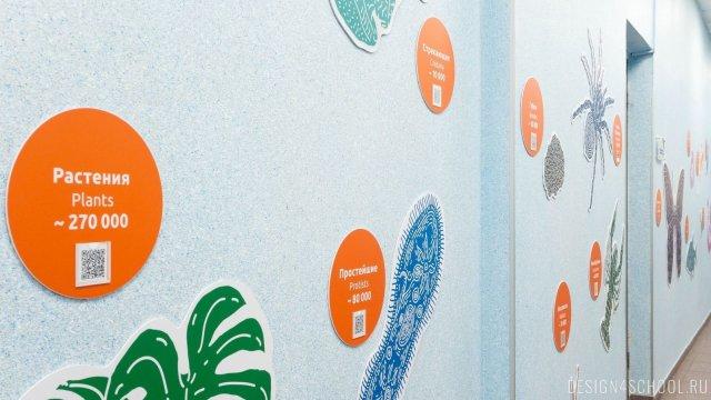 Изображение 3 - дизайн стен школьного фойе, коридоров и рекреации