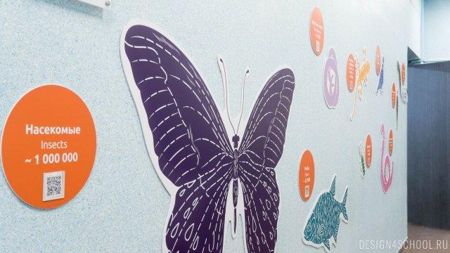 Изображение 4 - дизайн стен школьного фойе, коридоров и рекреации