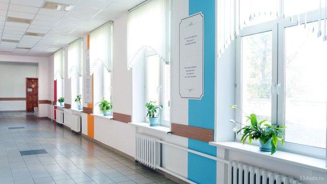 Изображение 7 - оформление коридора школы