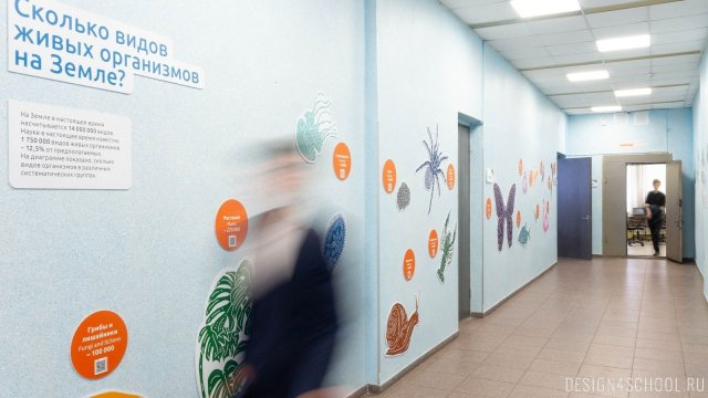 Изображение 14 - дизайн стен школьного фойе, коридоров и рекреации