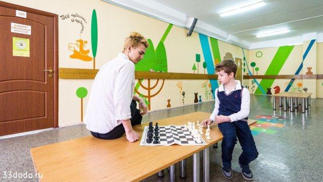 Изображение 11 - шахматное оформление школы